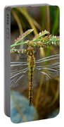 Dragonfly X-ray Portable Battery Charger