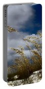 Drama In The Sky  Portable Battery Charger