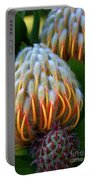 Dramatic Protea Flower Portable Battery Charger