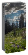 Dramatic Rainier Flower Meadows Portable Battery Charger