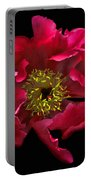 Dramatic Red Peony Flower Portable Battery Charger