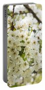 Dreamy White Cherry Blossoms - Impressions Of Spring Portable Battery Charger