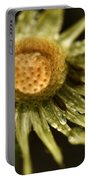 Dried Dandelion After Rain Portable Battery Charger