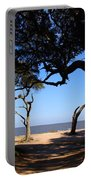 Driftwood Beach Pathway Portable Battery Charger