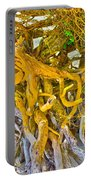 Queen Mariana's Driftwood Portable Battery Charger