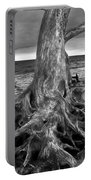 Driftwood On Jekyll Island Black And White Portable Battery Charger
