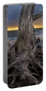 Driftwood On Jekyll Island Portable Battery Charger by Debra and Dave Vanderlaan