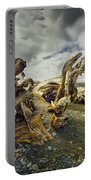 Driftwood On Rialto Beach Portable Battery Charger