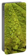 Dripping Vine Maple Portable Battery Charger