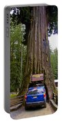 Drive Through Redwood Tree Portable Battery Charger