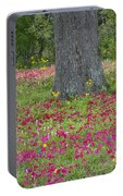 Drummonds Phlox And Crown Tickweed Central Texas Portable Battery Charger