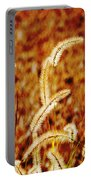 Dry Grass Portable Battery Charger
