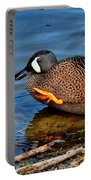 Ducky High Five  Portable Battery Charger