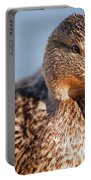 Duck In Water Portable Battery Charger