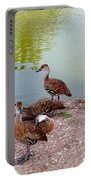 Duck Pond Portable Battery Charger