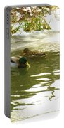 Duck Swimming In A Frozen Lake Portable Battery Charger