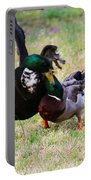Duck Tussle II Portable Battery Charger