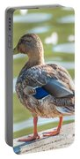Duckling By The Lake  Portable Battery Charger