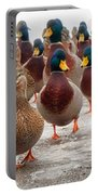 Duckorama Portable Battery Charger by Bob Orsillo