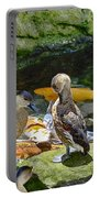 Ducks At The Koi Pond Portable Battery Charger