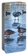 Ducks On Ice Portable Battery Charger