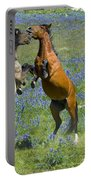Dueling Mustangs Portable Battery Charger