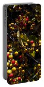 Dune Berries 2 Portable Battery Charger