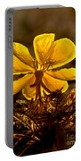 Dune Evening Primrose Portable Battery Charger