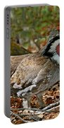 Dusky Grouse Cock Portable Battery Charger