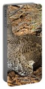 Dusky Grouse With Chicks Portable Battery Charger