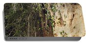Dusky-headed Parakeets Portable Battery Charger
