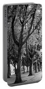 Dutch City Trees - Black And White Portable Battery Charger