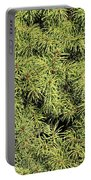 Dwarf Evergreen Portable Battery Charger