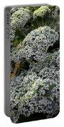 Dwarf Kale Portable Battery Charger
