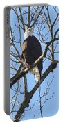 Bald Eagle Sunny Perch Portable Battery Charger