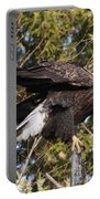 Eagle 1982 Portable Battery Charger