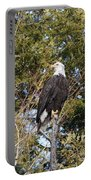 Eagle 1986 Portable Battery Charger