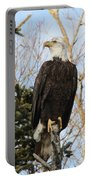 Eagle 1991 Portable Battery Charger