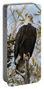 Eagle 2 Portable Battery Charger