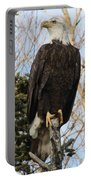 Eagle 5 Portable Battery Charger
