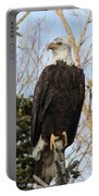 Eagle 6 Portable Battery Charger