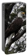 Eagle 9786 Portable Battery Charger