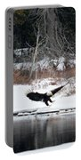 Eagle On The Shoreline Portable Battery Charger