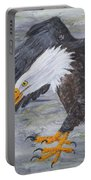 Eagle Study 2 Portable Battery Charger