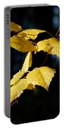 Early Fall Of  Downy Birch Portable Battery Charger