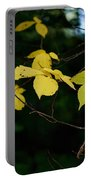 Early Fall Of Wych Elm Portable Battery Charger