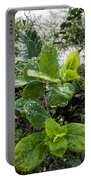 Early Rain  Portable Battery Charger