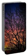 Early Spring Dusk  Portable Battery Charger