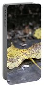Early Start To Autumn Portable Battery Charger
