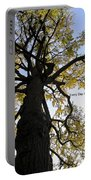 Earth Day Special - Ancient Tree Portable Battery Charger